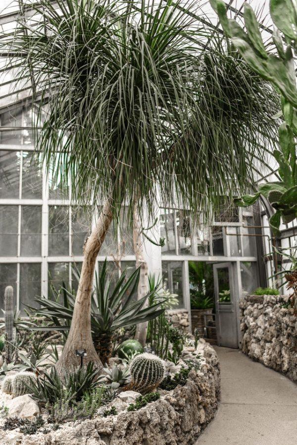Les 4 idées incroyables d'aménagement de jardin